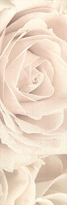 Декор 25х75 Роза 12056\3F